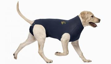 MPS Medical Pet Shirt for Dogs