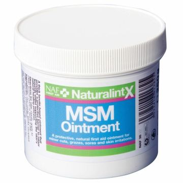 NAF NaturalintX MSM Ointment for Horses
