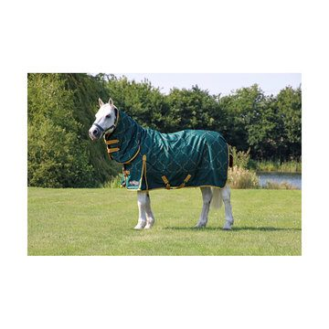 StormX Original Elegant Stirrup and Bit 200 Combi Turnout Rug Forest Green