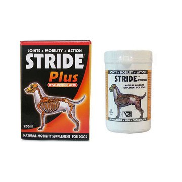 Stride for Dogs