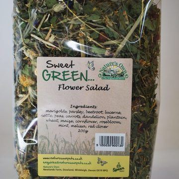 Sweet Green Flower Salad for Small Animals