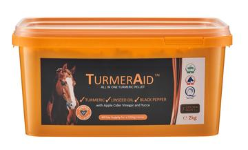 The Golden Paste Co. TurmerAid™ for Horses