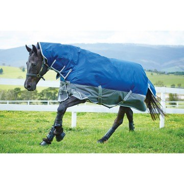 WeatherBeeta Freestyle 1200D Combo Heavy Rug