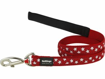 Red Dingo White Stars on Red Dog Lead