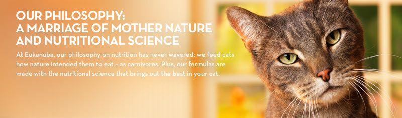 Eukanuba Veterinary Diets Philosophy