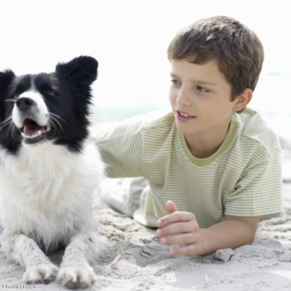 How to bond with your rescue dog