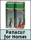 Panacur Equine Wormer