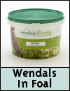 Wendals In Foal Breeding Supplement