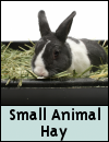 Small Animal » Hay