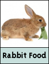 Rabbit Food & Treats