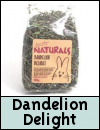 Boredom Breaker Treats » Dandelion Delight
