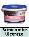Brinicombe Equine Ulcereze for Horses