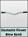 HyCLASS Diamante Flower Brow Band