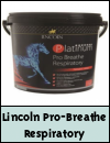 Lincoln Platinum Pro Breathe Respiratory