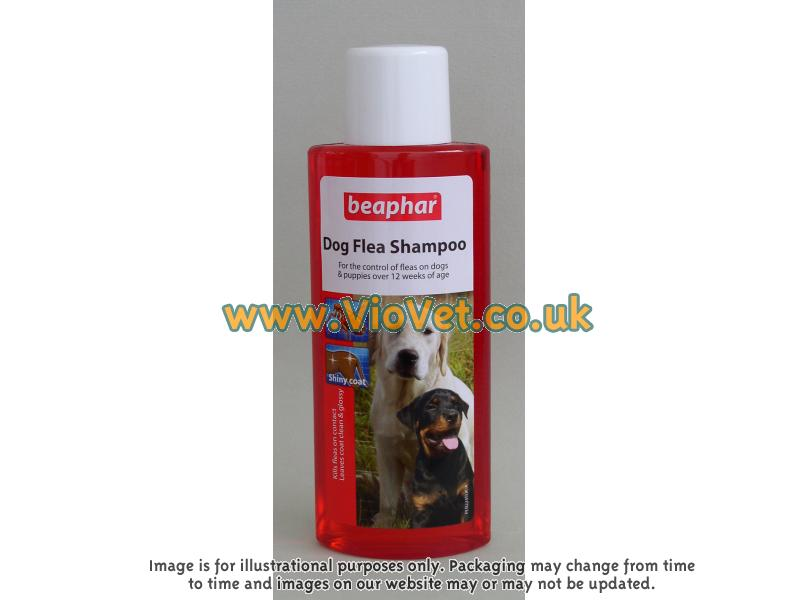 Flea Shampoo » 250ml Bottle