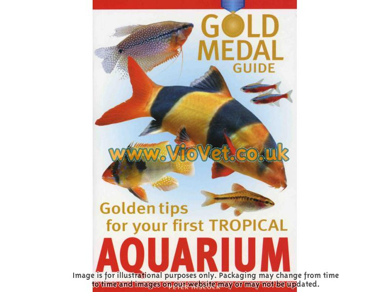 Golden Tips For Your First Tropical Aquarium