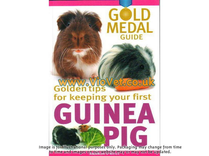 Golden Tips For Keeping Your First Guinea Pig