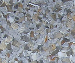 Oyster Shell Grit Chicken Grit Chick Oyster Shell Grit