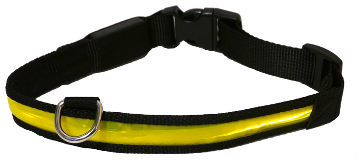 Premium Flashing Yellow Collar » Large