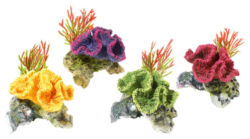 Coral On Rocks With Plants » 9cm