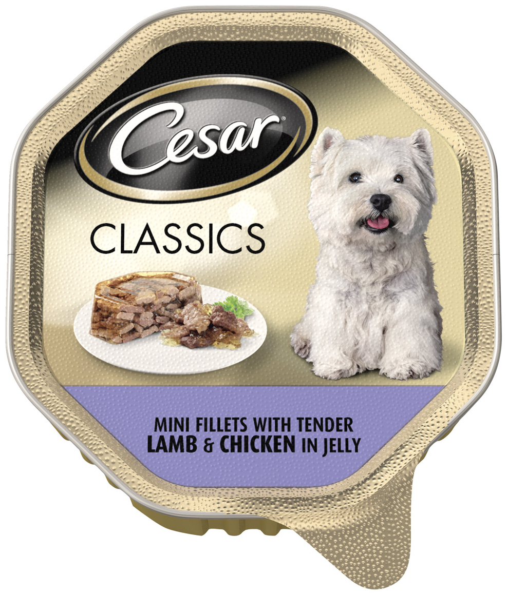 Healthy Dog Food For Small Breeds