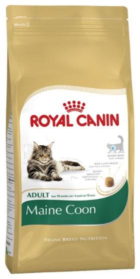 royal canin feline breed nutrition maine coon cat food. Black Bedroom Furniture Sets. Home Design Ideas