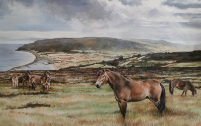 Exmoor Ponies » Double Mounted