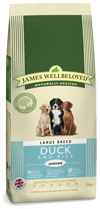 Large Breed Dry » 4kg Bag