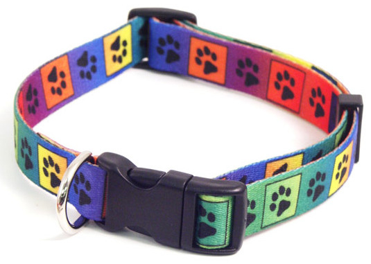 Bright Multi Paw » 25 - 36cm x 13mm