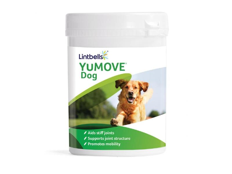 YuMove Dog » Pack of 300 Chewable Tablets +20% Extra Free (360 Tablets)
