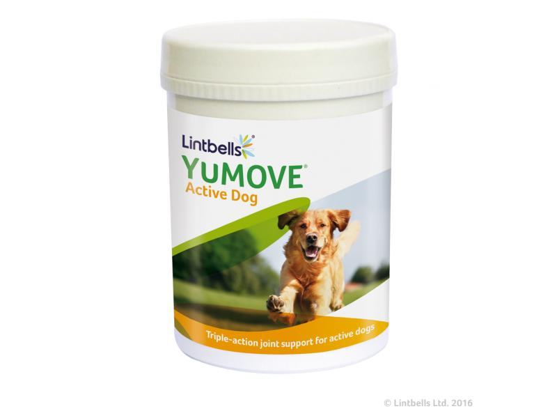 YuMove Active Dog » Pack of 240 Tablets
