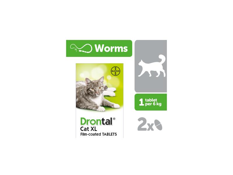 Drontal Cat XL Wormer