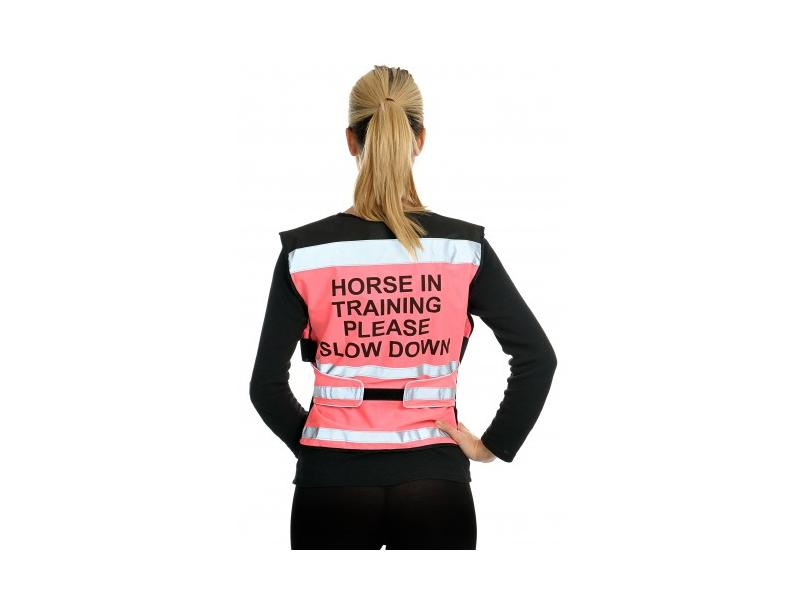 Horse in Training Please Slow Down » Pink » XX Large