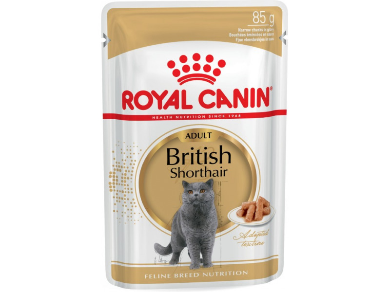 royal canin feline breed nutrition british shorthair cat food. Black Bedroom Furniture Sets. Home Design Ideas