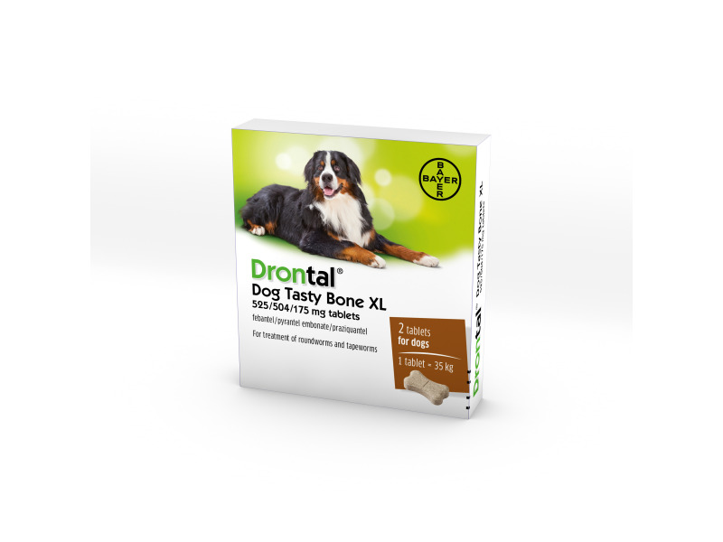 Plus Flavour XL for Dogs » Priced Per Tablet